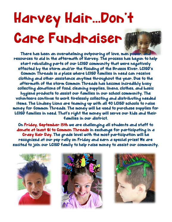 Harvey Hair Fundraiser